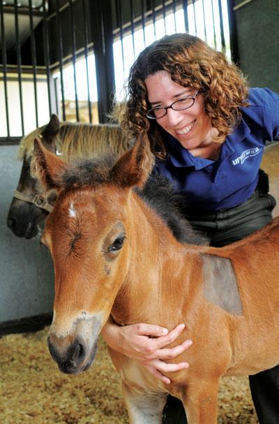 UF Foal Care