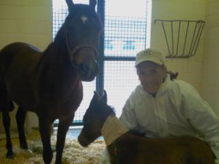 Success Story of the Month: Septic Foal Care » Large Animal